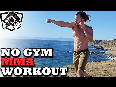 No Gym Boxing/MMA Workout — Training at Home!