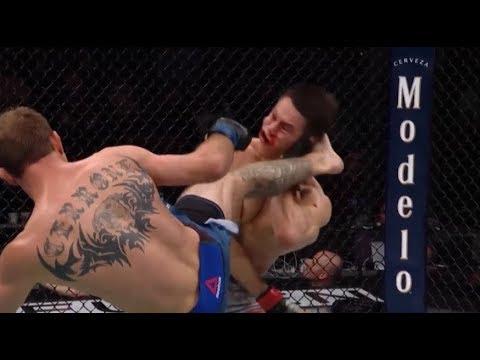 Best MMA Knockouts of January 2019  (UFC,Bellator,ONE Championship)