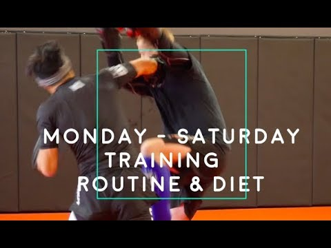 Monday to Saturday Training Routine & Diet – Fight Camp Ep 2