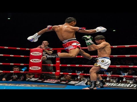 Best Kick Knockouts Ever in Muay Thai – MMA Fighter