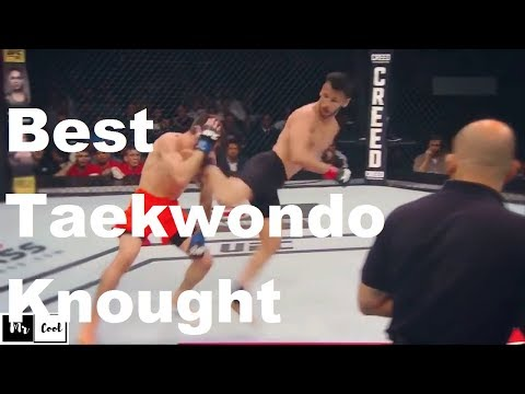 Best Taekwondo Knockouts KO in UFC – MMA Fighter